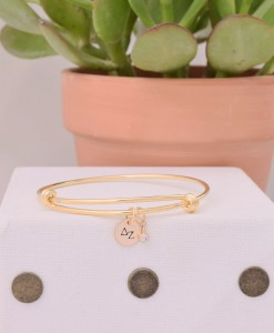 single-coin-cz-bangle-gold-delta-zeta