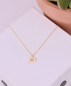 sorority-state-necklace-gold-alpha-phi