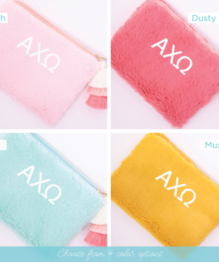 4 color options teddy bear bag alpha chi omega