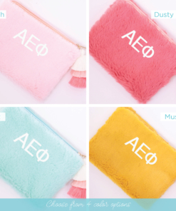 4 color options teddy bear bag alpha epsilon phi