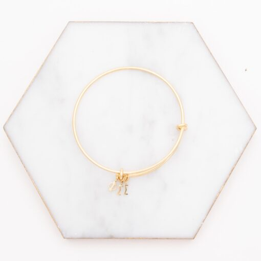 phi sigma sigma greek letter charm bangle gold on marble
